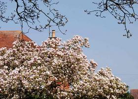 解答!伯恩茅斯大学留学费用是多少?