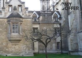 格罗斯泰斯特主教大学世界排名怎么样?