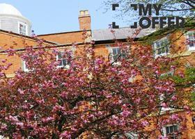 注重学术和实用性的奇切斯特大学宿舍是什么样的?